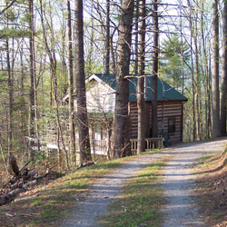 Wooded setting with a rental cabin near Townsend