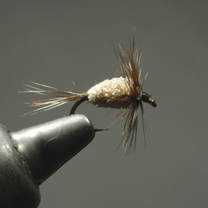 Speck Wet Fly