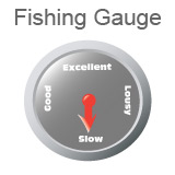 Fishing Gauge indicating fishing is slow.