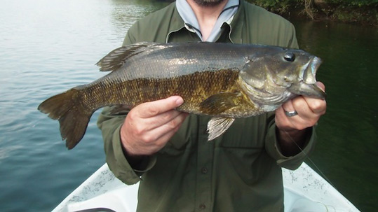 One of Josh Pfeiffer's clients holding a large smallmouth bass.