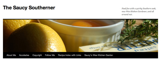 The Saucy Southerner Website header.