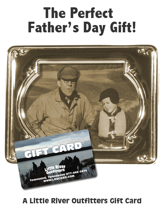 Father's Day Gift Card Ad