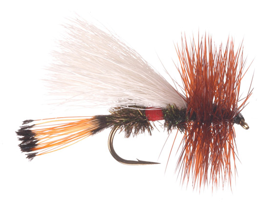 Royal Trude dry fly.