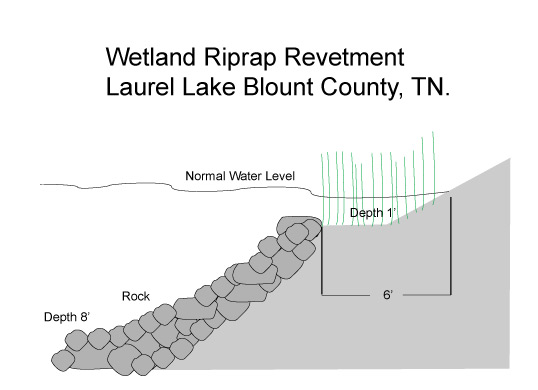 Wetland Revetment Laurel Lake Tennessee